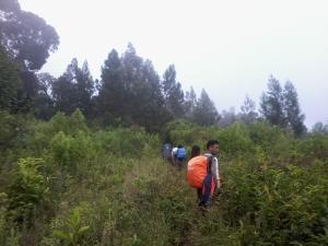 Memasuki Pintu Rimba Gunung Dempo