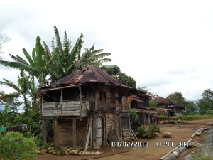 Pagar Alam. Gubug petani kopi. Didiami oleh petani untuk menjaga tanaman kopi yang akan dipanen.
